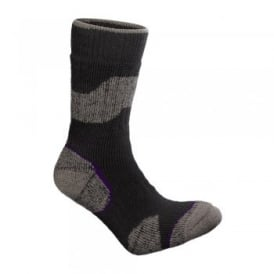 Ladies Mountain Master Sock Grey/Purple
