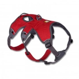 Web Master Harness - Red Currant